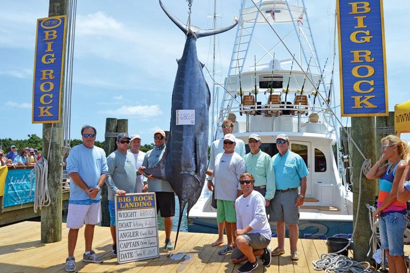 Earle Hall's Big Rock blue marlin