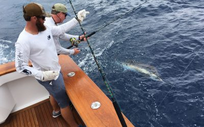Bluewater is Your Custom Sportfish and Production Yacht Sales Leader