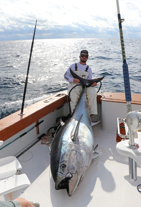 500-pound-bluefin-tuna-tenacity-sportfishing
